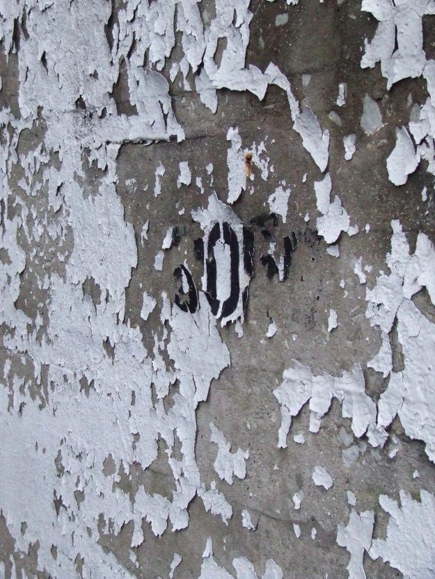 DSCF6304